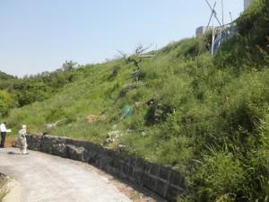 和泉市 外構 エクステリア ふとん篭 施工前